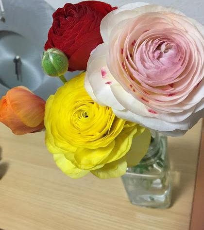 購入した花